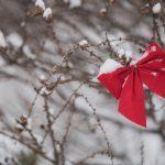 Weihnachtsferien 2019/2020-VON ALLMEN AG